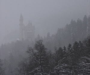 Neuschwanstein through the snow